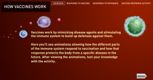 How Vaccines Work from The History of Vaccines