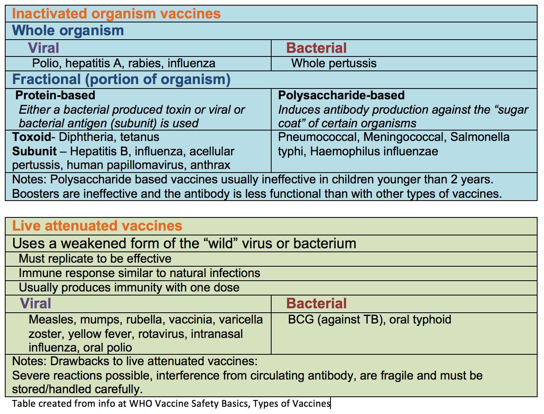 the hepatitis b virus and vaccination essay